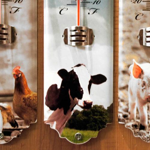 Θερμόμετρα σε διάφορα σχέδια και χρώματα, με οικόσιτα ζώα φάρμας