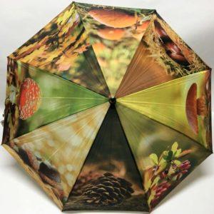 Ομπρέλα με σχέδια φυτά του δάσους